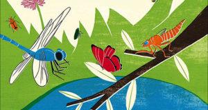 Il mondo segreto degli insetti