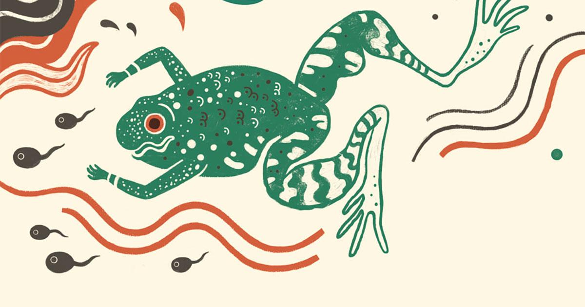 La danza delle rane